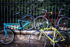 Colourful Bicycles
