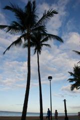 夜明けの浜で