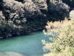 陽光の川面