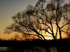 日没後の楽しみ