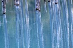 油彩画の池