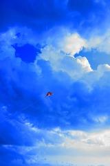 空へ・・・