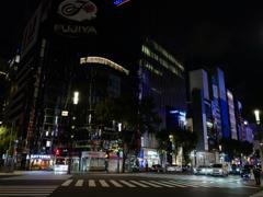 Tokyo Move : Sukiyabashi Crossing