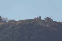 駅から伐株山