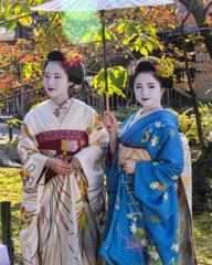 Against the Light : Scene II Kyoto 2019