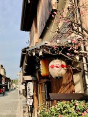 街角スナップ:京都・上七軒通り