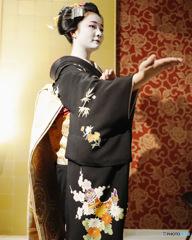 令和二年 弥生 舞妓 佳つ駒デビューの舞