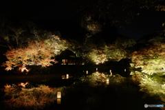 Night illumination, Mifuneyama Rakuen