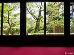 Shakkei : Yasaka-Club