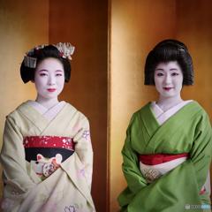 Portraits Maiko and Geiko