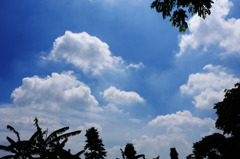 SKY OF JAWA