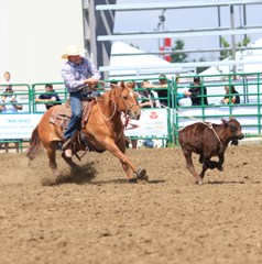 FARMER'S DAY / CALF ROPING