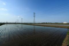 水田と鉄塔