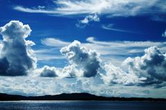 雲の動物園
