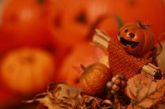 Hallowe'en  Orange