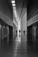 Monotone Corridor