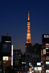 Torch of hope (Looking at Tokyo Tower)