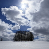 雲間に春の陽