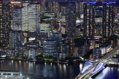 Near future city