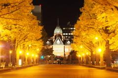 Yellow shining Road in Sapporo