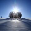 雪 の 王 国