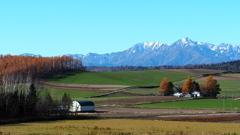 Of dairy farm zone scenery