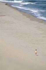 鳥取砂丘の浜辺で望遠