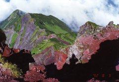 1992利尻山頂セルポ
