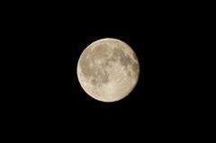 満月の少し後・・・