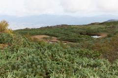 チセヌプリ山頂の池