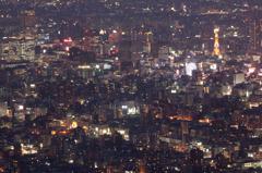 藻岩山山頂からの札幌の夜景