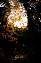 闇は光によってその存在を知らしめる