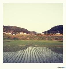 ロモ 水田の水面に写る電車かな。