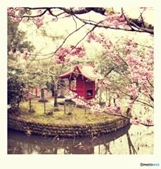 桜と社のある風景ポラロイド・テイスト