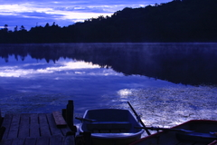 早朝の白駒池 夏