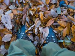 Low mountain walking of fallen leaves