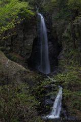 板敷渓谷 大滝