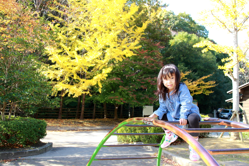 Sweet November ♪