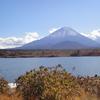 富士山-精進湖②