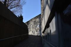 光と陰   動物園内の通路。