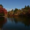 湖畔の秋 6