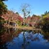 湖畔の秋 7