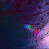 虹 - 深く