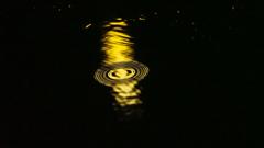 夜の水溜まり