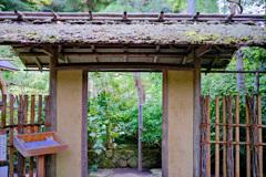 鎌倉より〜秋の風景-2