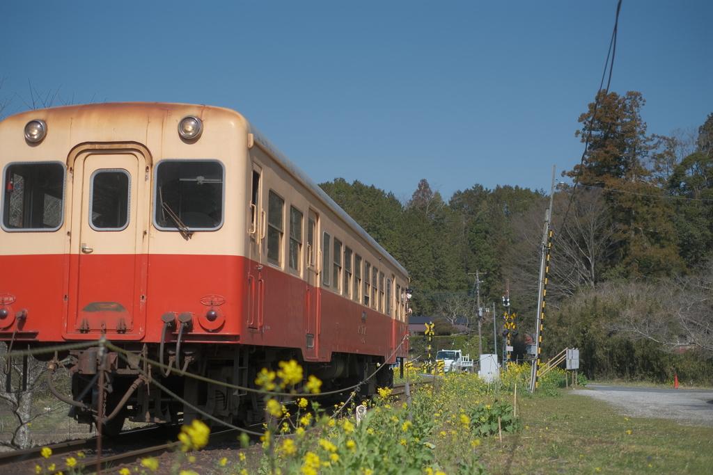 春色の汽車に乗って...〜1