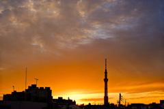 スカイツリーと夕陽6