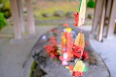 鎌倉より〜秋の風景-7