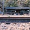 わたらせ渓谷鐵道2020秋10