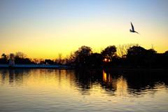 夕焼けと公園の風景7